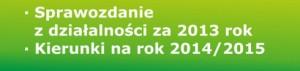 ikonka2013